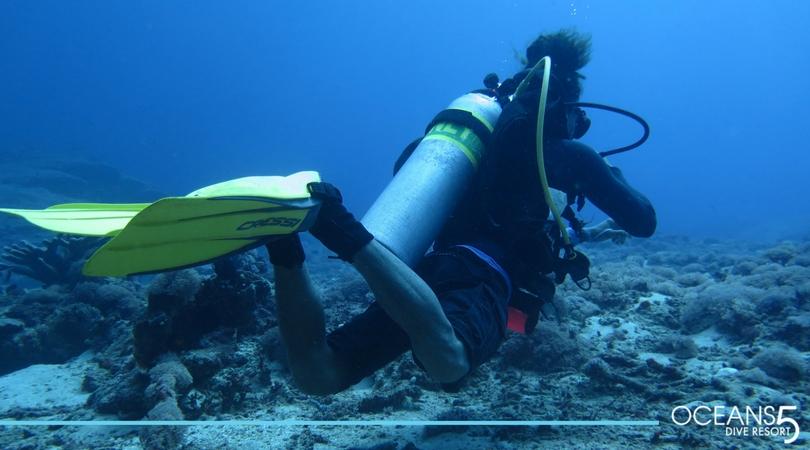 Diver hovering underwater
