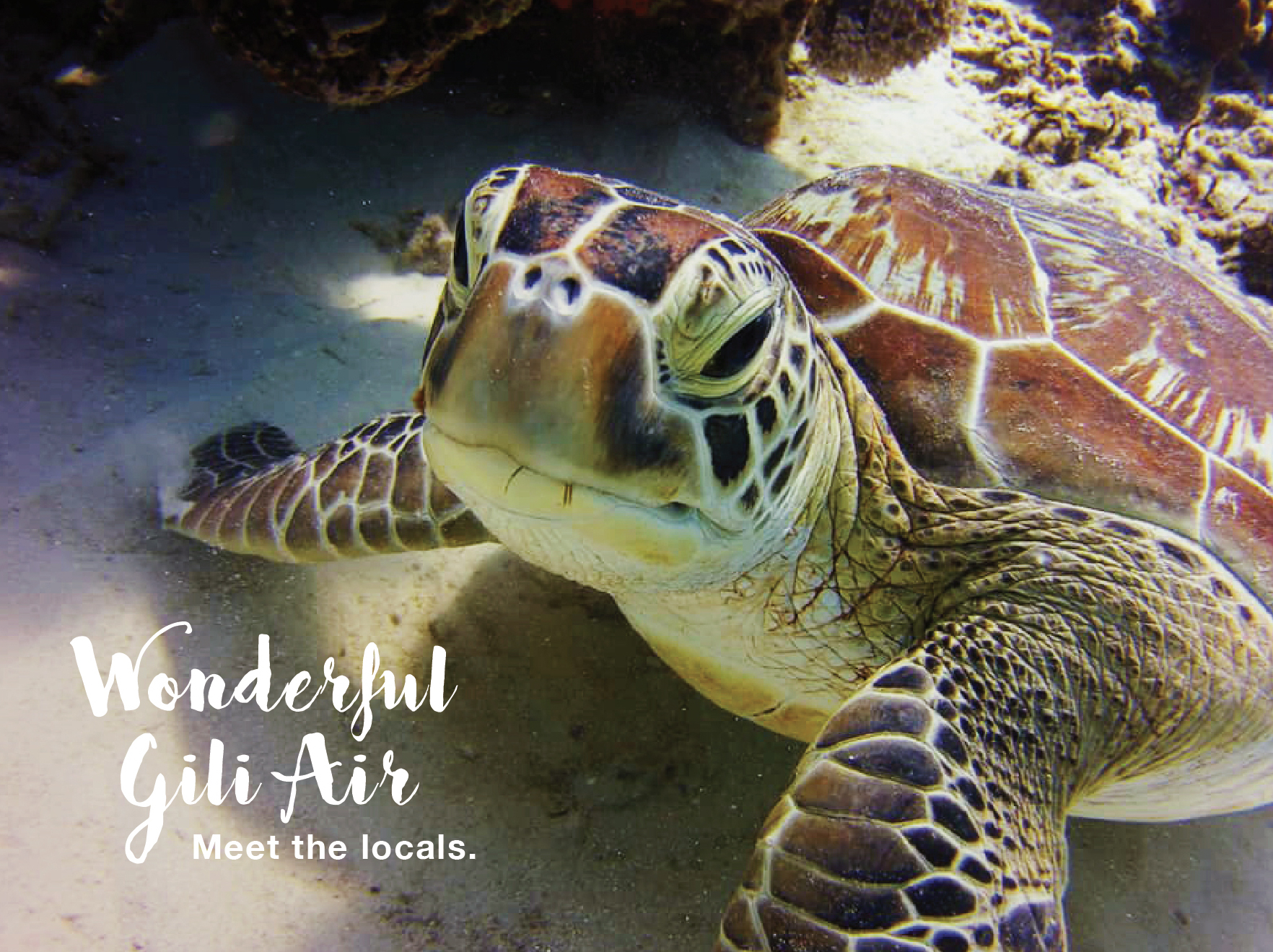 Diving around Gili Air