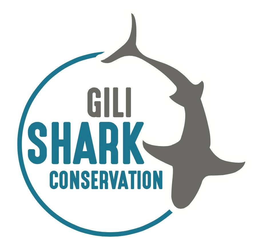 Dive Resort Ocerans 5 Gili Air supports Gili Shark